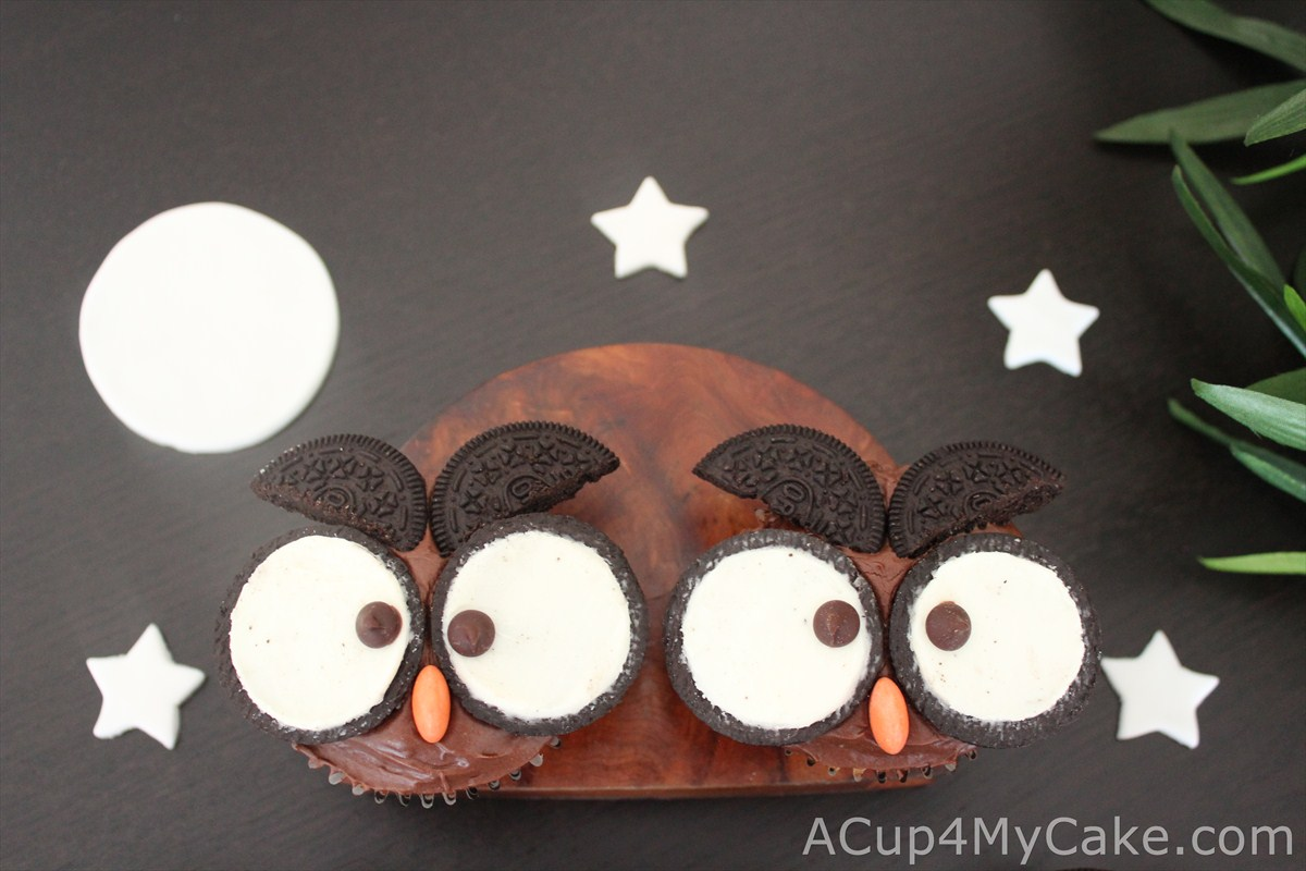 Big Eyes In The Night Owl Cupcakes ACup4MyCake